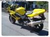 VTR1000 neu (5)
