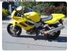 VTR1000 neu (7)