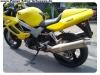VTR1000 (6)