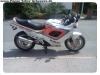 GSX750F (1)