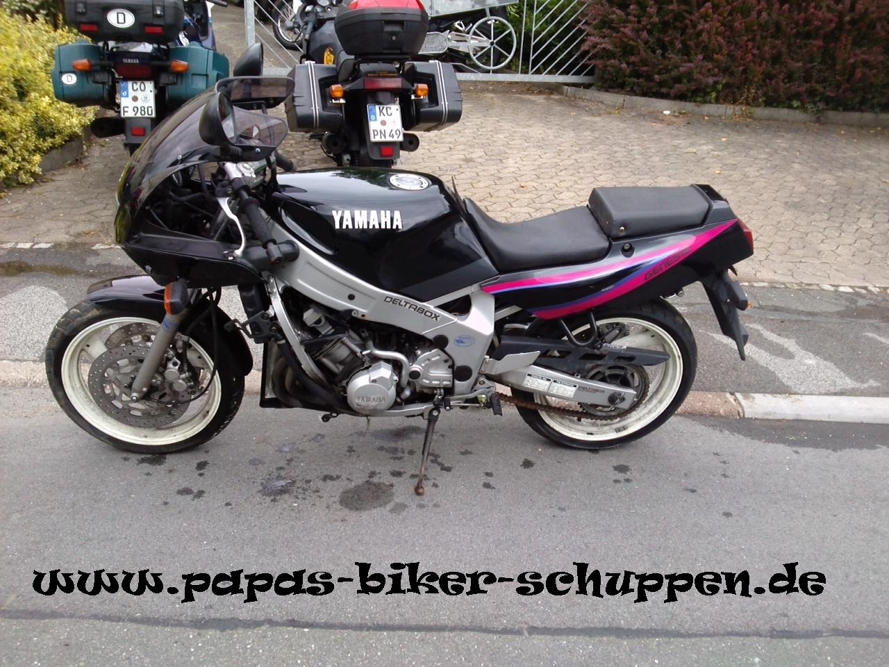 FZR600 Bastler (4)