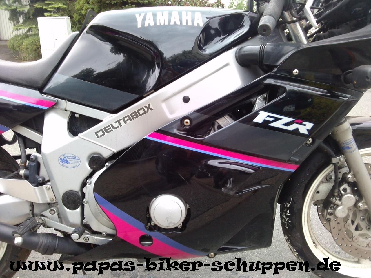 FZR600 Bastler (7)
