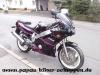 FZR600 Bastler (1)