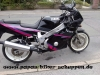 FZR600 Bastler (6)