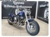 Harley-Rene-1
