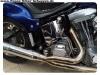 Harley-Rene-11