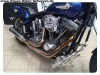 Harley-Rene-25