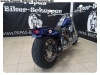 Harley-Rene-34