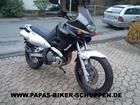 XF650 (1)
